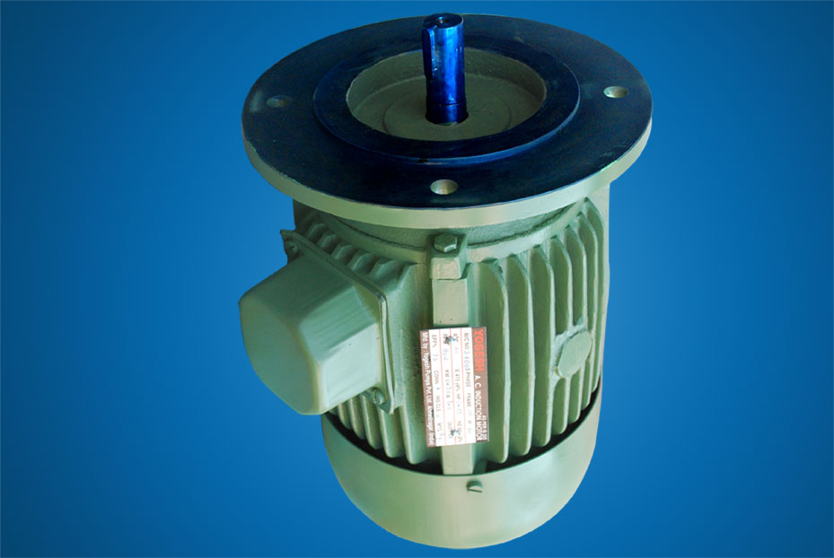 Electric Motors Induction Motors And Flange Mounted