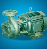 Domestic Monoblock Pumpset